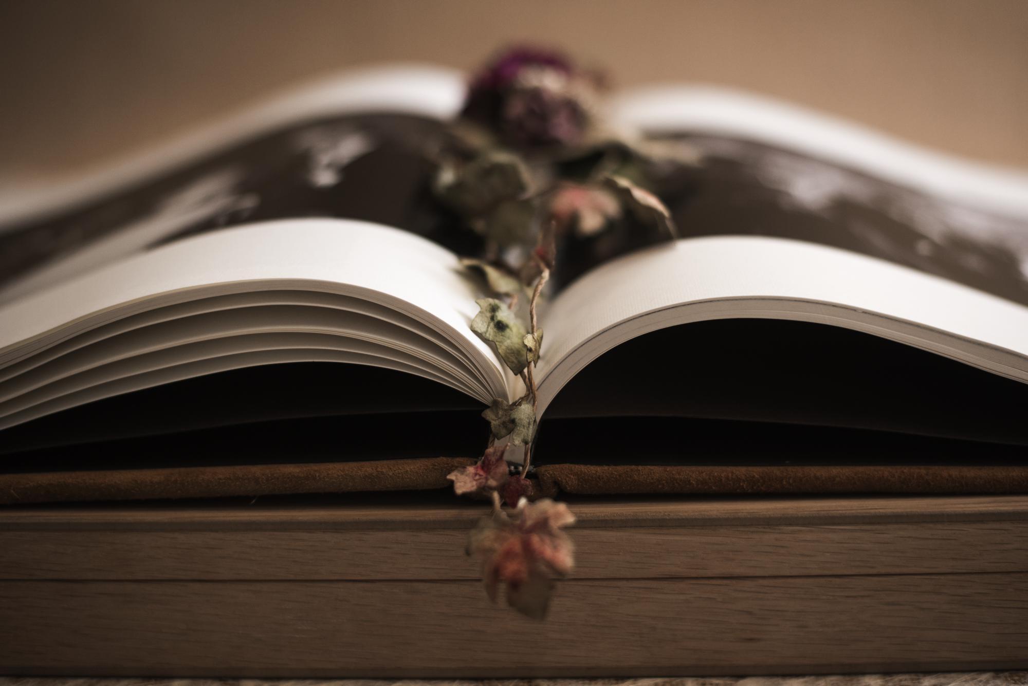 Libro en hoja eucaliptus abierto con adorno de flores secas